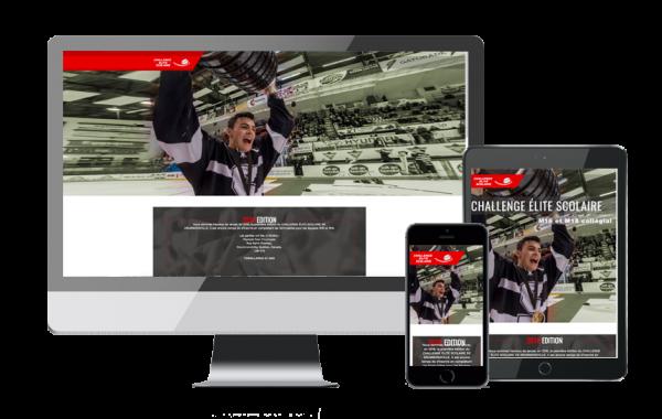 CESDD (site web)
